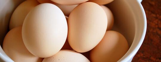 Top 10 curiozitati despre oua