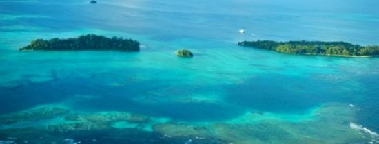 Un scafandru a înregistrat video un moment rar al lumii subacvatice