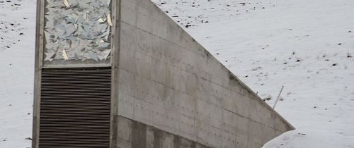 Rezerva Mondială de Seminţe va salva omenirea în cazul unui DEZASTRU. Acum clădirea, unde nu are acces publicul, poate fi vizitată online