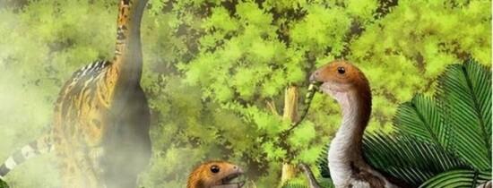 Evoluţia INCREDIBILĂ  a unei specii de dinozauri ,,La nicio altă fosilă a unei vertrebrate nu a fost observată această particularitate''