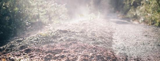 După un studiu de mai bine de 25 de ani, savanţii au ajuns la un rezultat îngrijorător: emisiile de carbon din solul pădurilor vor accelera încălzirea globală