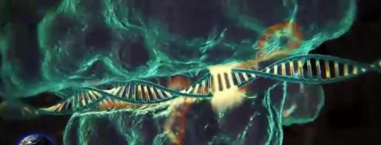 Descopera Acum: Savanţii au utilizat editarea genetică în timp real. Accidentul nuclear de la Cernobîl s-ar fi produs dintr-un alt motiv. Ce tip de şoferi îşi pierd cel mai uşor atenţia atunci când conduc