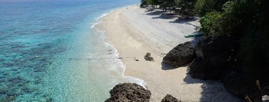 O descoperire de ''unul la un milion'' a fost realizată în Filipine