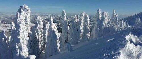 Peisaje de poveste, create de zăpadă şi viscol, în Munţii Apuseni