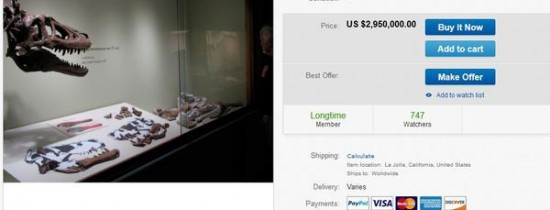 Fosila unui pui de T-Rex a fost scoasă la vânzare. Licitaţia stârneşte controverse puternice