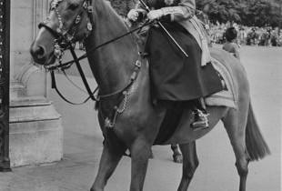 Ce salariu şi beneficii are cel care îngrijeşte caii familiei regale din Anglia