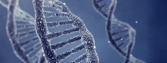 Savanţii scoţieni au  au studiat pentru prima oară toţi cei 46 de cromozomi umani şi au făcut o descoperire remarcabilă