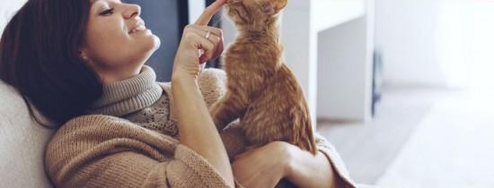 De ce animalele de companie fac lucruri bizare