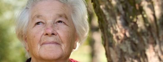 Bacteriile din flora intestinală joacă un rol important în dezvoltarea bolii Parkinson