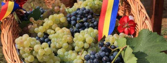 Cele mai scumpe vinuri din România, reapar pe piaţă. Cu cât se vinde o sticlă din celebrul vin de la Lechinţa